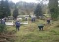 Adacık ve Çeşmeönü Mezarlıkları Belediye elemanları tarafından temizlendi