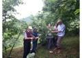 Trabzon'da 2015 Yılı Tahmini Fındık Rekolte Tespiti Yapıldı