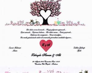 Zübeyde Hanım & Ali evleniyor…